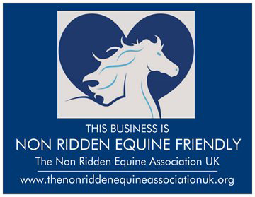 Non Ridden Equine Friendly